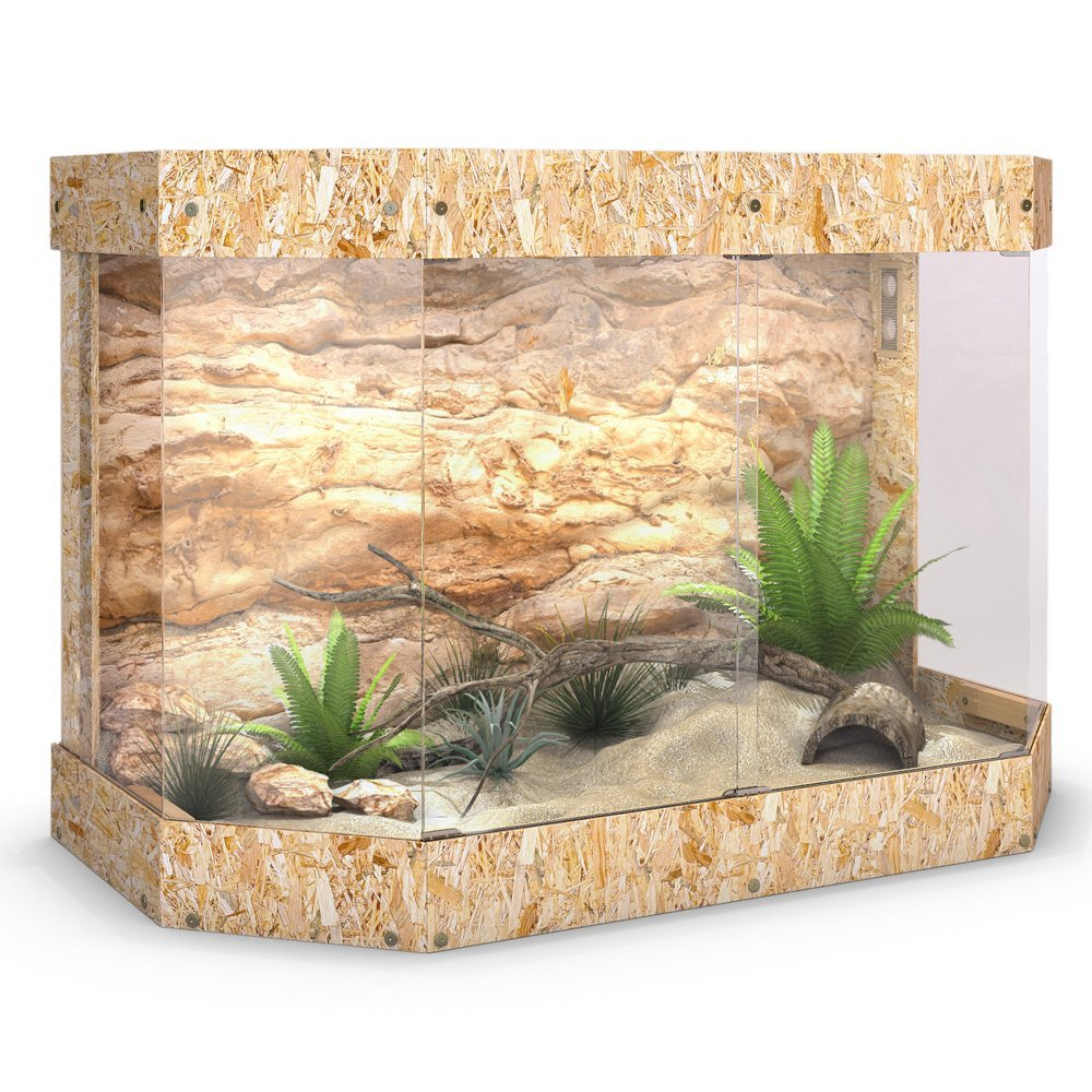 Bartagame Neues Terrarium : Terrarium Bartagame Pictures to pin on Pinterest